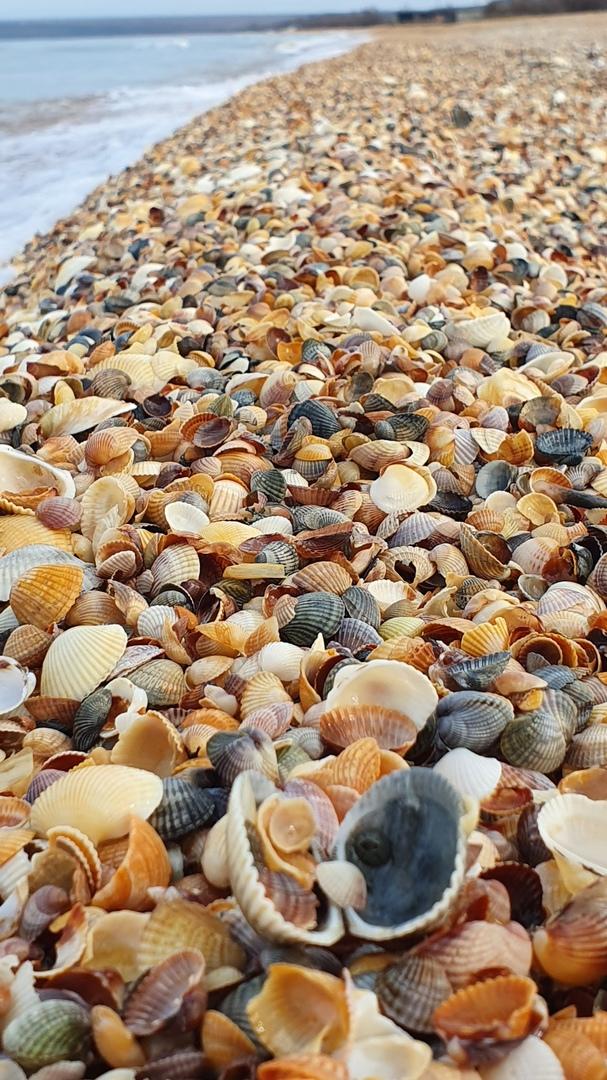 лучшие пляжи азовского моря в крыму фото