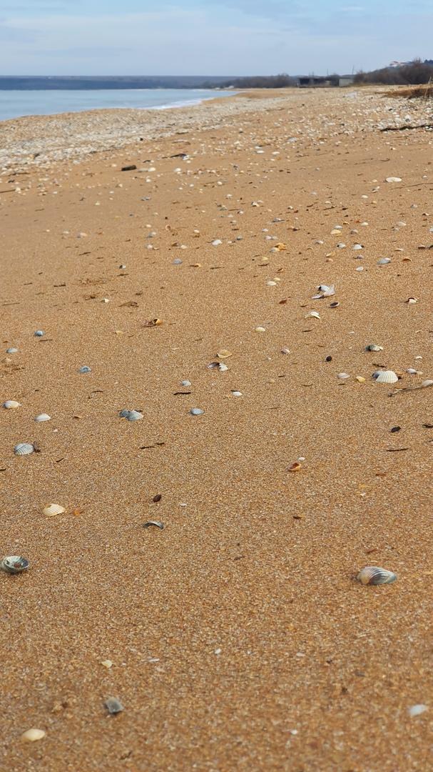 песчаные пляжи азовское море крым фото
