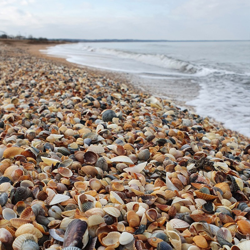 Генеральские пляжи в Крыму где находятся фото